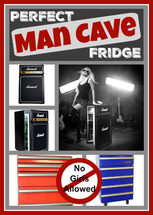 Small Man Cave Fridge : Perfect man cave fridges