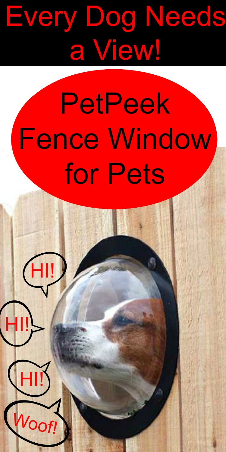 PetPeek Fence Window for Pets. Give your pet a window to the outside world. They will love you for it.