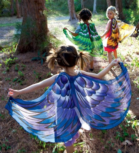 Kids Play Wings For Pretend Dress-Up Play
