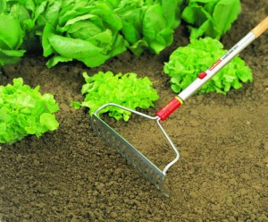 garden rake